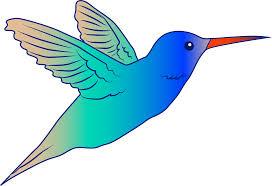 hummingbird cartoon images free download clip art free clip