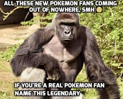 Funny Gorilla Memes - pin by mobile9 on funny stuff for a laugh pinterest pokemon