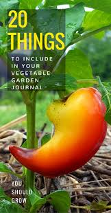 20 things to include in your vegetable garden journal you should
