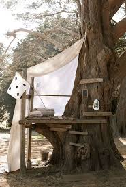 Simple Backyard Tree Houses by The 25 Best Simple Tree House Ideas On Pinterest Diy Tree House