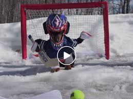 Hockey Goalie Memes - dog memes funny dog memes stories photos and more