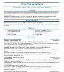 resume for business development business resume mcs95 com