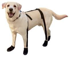 buy boots uae canine footwear suspenders snuggy boots for small black