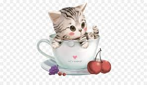 wallpaper cat whatsapp valentines day 2018 whatsapp wallpaper kitten png download 515
