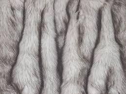 Fox Fur Blanket Pin By Jamilya Kuanysheva On Moodboard1 Pinterest Catalog