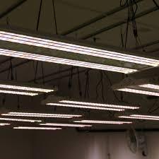 commercial led grow lights electric sky 300 wideband led grow light the green sunshine company