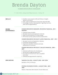 Resume Skill Section Resume Skills Section Example Download Resume Skills Section