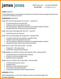 resume help mn examples of resumes registrar resume sample it professional with 87 surprising a professional resume examples of resumes