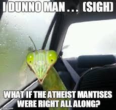 Mantis Meme - mantis imgflip