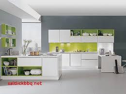cuisine gris et vert anis deco salon vert anis pour idees de deco de cuisine élégant deco