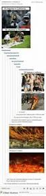 Loblaws Home Decor 25 Best Memes About Loblaw Loblaw Memes
