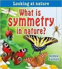 pinterest u0027teki 25 u0027den fazla en iyi symmetry activities fikri