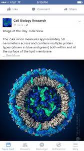 52 best unidos contra el zika dengue chikun e influenza