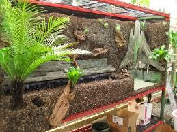 a big terrarium construction journal dendroboard