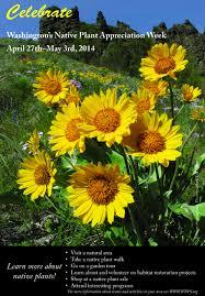 native plant restoration wnps