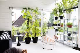 dream green homes natural dream green homes design in sweden