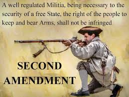 Second Amendment Meme - your second amendment rights coaching by subject experts