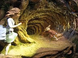 alice in wonderland movie wallpapers rabbit hole wallpapers movie hq rabbit hole pictures 4k wallpapers