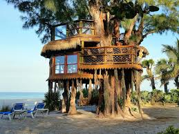 cool tree house 7 treehouses in florida that awaken your inner child