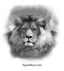 awesome lion head tattoos design tattoo ideas pinterest