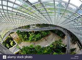 the cloud forest a large indoor greenhouse set in the grounds of
