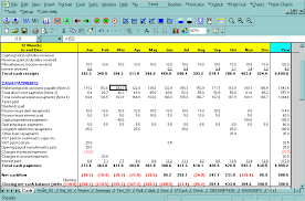 Microsoft Excel Flow Template Screen Cashflow Plan Flow Plan Cashflow Planner