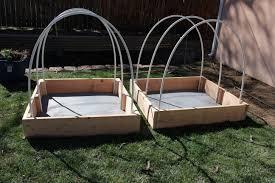 backyard gardening for beginners part 2 the kurious kaleidoscope