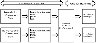 acute phase response before treatment predicts radiation