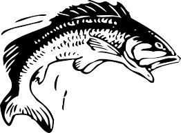 free vector graphic fish fishing animal seafood free image