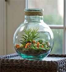 recycled glass terrarium jar decorative accents