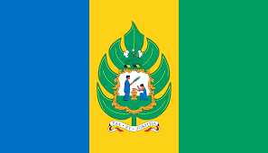 Flag Of Grenada Best 25 St Vincent Flag Ideas On Pinterest Blue Flag Aesthetic