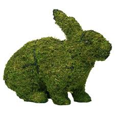 Garden Topiary Wire Forms Running Rabbit Large Mossed U0026 Planted Topiary Frame Gardening