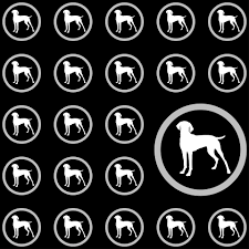 dog wallpaper pattern background free stock photo public domain