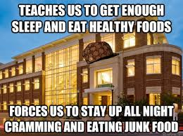 I Like Food And Sleep Meme - teaches us to get enough sleep and eat healthy foods forces us to