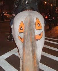 Horse Halloween Costumes Sale 68 Horsey Halloween Images Halloween