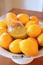 best 25 meyer lemon tree ideas on pinterest lemon tree plants
