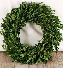 preserved boxwood wreath 16in