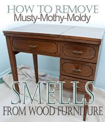How To Clean Mildew In Bathroom How To Remove Musty Mothy Moldy Smells From Wood Furniture