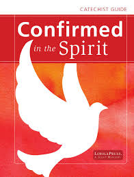 confirmed in the spirit catechist guide english by loyola press