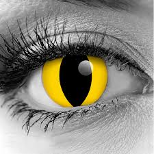 halloween vampire contacts yellow cat premium cls fx theatrical contact lenses pair