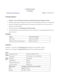 Basic Resume Template Free Resume Templates It Template Examples Cio Within 89 Cool