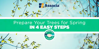 partner post prepare your trees for in 4 easy steps
