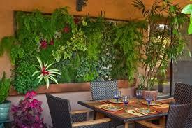 Vertical Garden Adalah - distributor geotextile nusantara apa itu vertical garden