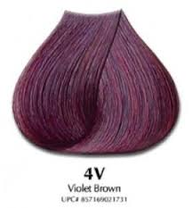 25 unique violet brown ideas on pinterest burgundy brown hair