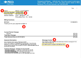 how to read your peco electric bill