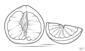 pomelo sliced open coloring page free printable coloring pages