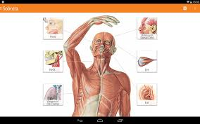 Photos Of Human Anatomy Sobotta Anatomy Atlas Android Apps On Google Play