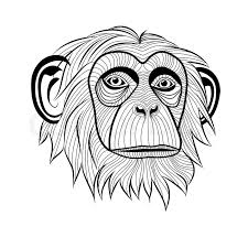 monkey tattoo sketch photo 2 real photo pictures images and