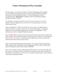 write best business plan 100 original how to a for dummies project