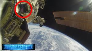 Radio Reference Live Feed Strange Alien Species Caught Inside Iss Nasa Cut U0027s Live Feed 8